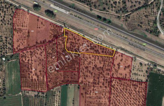 Efeler'de Aydın-İzmir Otobanına Cephe 4.770 m2 Tarla