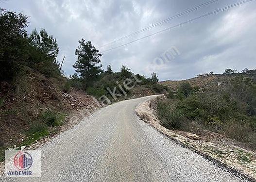 ALANYA İmamlı da Satılık asfalt yola sıfır cepheli 8.977m2 Tarla