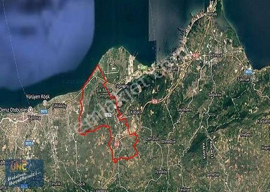 Yalova Çiftlikköy 6.400 m2 Fırsat Yatırımlık Arsa