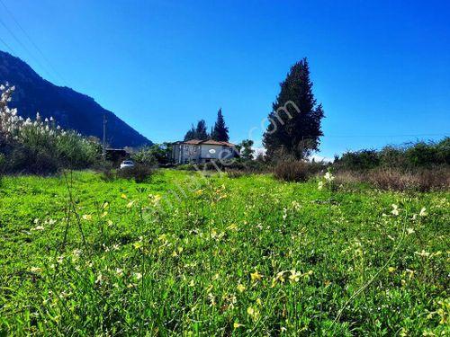 Ortaca Dalyanda satılık yol cepheli 9 300 m2 yatırıma uygun arazi