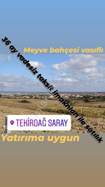 SARAY ÇUKURYURTA SATILIK 290M YATIRIMLIK MUVAFAKATNAMELİ ARSA
