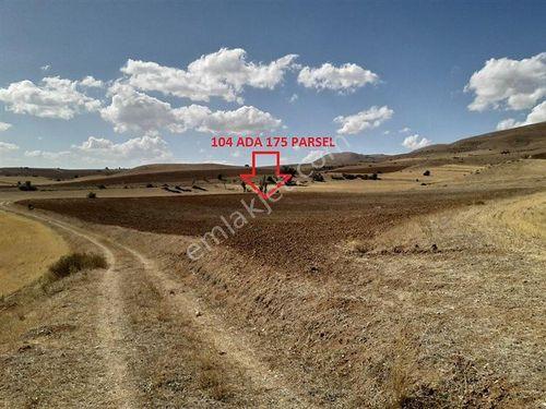 Gümüşhane Köse Akbaba Köyünde 17472 m2 Tarla