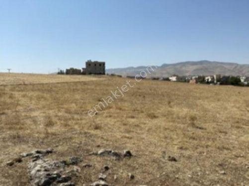 Siirt Kurtalan Yayıkdere Mahallesinde 1600 m2 İmarlı Arsa