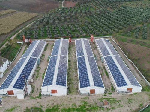 Bursa Karacabey Danişment 36 Dönüm Satılık Çiftlik