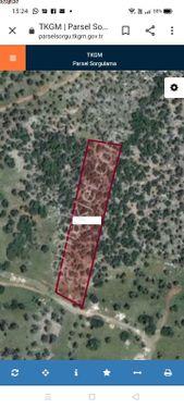 Didim Akbük Mahallesi Kazıklı Yolunda Satılık Zeytinlik