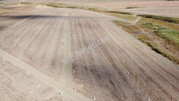 SİLİVRİ FENERKÖY DE SATILIK KELEPİR KÜŞE ÇAPLI 442 m2 KARE ARSA