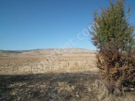 Afyon Başmakçı da 750 000 m2 arazi satılık