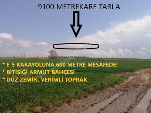 SAZLIDERE KÖYÜ YATIRIMLIK 9100 METREKARE TARLA!