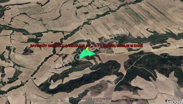 GELİBOLU BAYIRKÖY DE BOĞAZ MANZARALI 9.685,48 M KARE TARLA