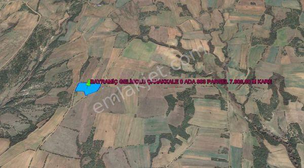 GELİBOLU BAYRAMİÇ DE SAROS MANZARALI  7.800,00 M KARE TARLA