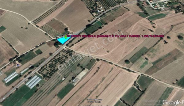 GELİBOLU BAYIRKÖY DE KÖY ASFALTINA CEPHE 1.226,75 M KARE TARLA