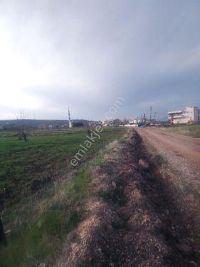 Alim emlakdan satılık arazi