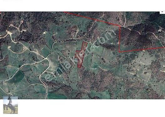 Çanakkale Biga Kazmalı Köyü Satılık Tarla