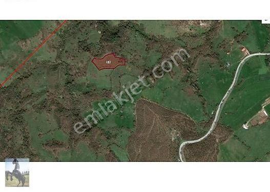 Biga Bakacak Çiftliği Köyünde Satılık Arazi