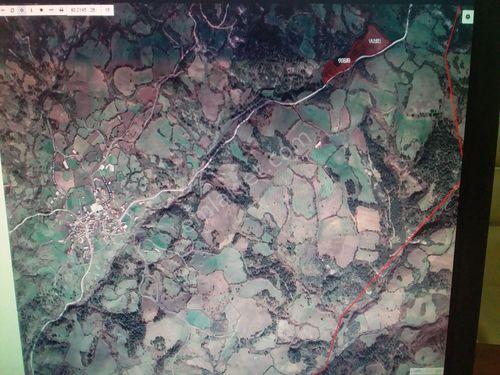 Karamusalar köyünde 32.000m2 satılık tarla 250.000TL
