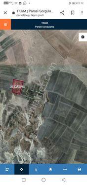 GÖLBAŞI GÖLBEK MAHALLESİ'NDE TAM YATIRIMLIK TARLA  9276 m2
