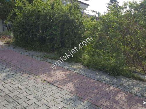 kocaeli darıca satılık arsa abdiipekçi mahallesinde 258m2