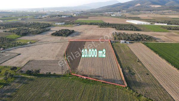 EĞERCİ'DE 10.000 m2 SATILIK TARLA