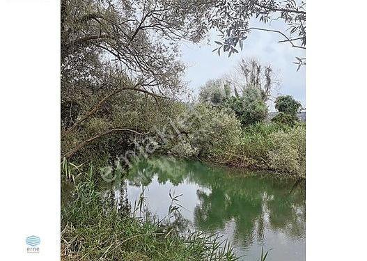 AGVA'DA dereye SIFIR PREFABRIK EVE UYGUN 443 MT2 ARAZI