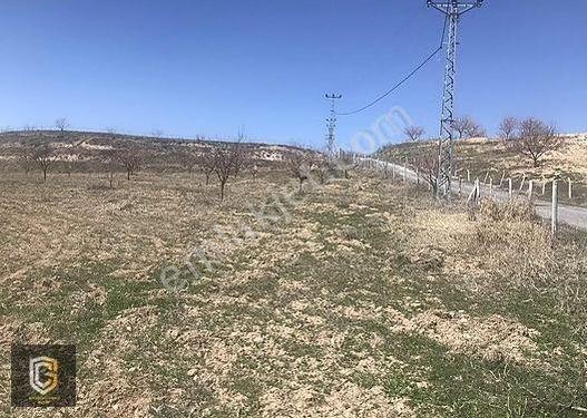 FIRSAT!!! Havaalanı Yolunda Kayısı Bahçeli Arsa