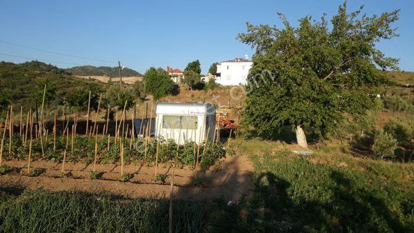 Muğla Kavaklıdere 19.136 m2 3 tarla + kargır ev Satılık