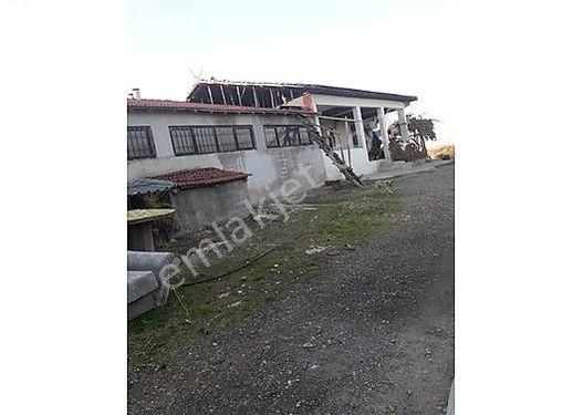 Yeşilyurt Bindalda satılık 70 dönüm Çiftlik üzeri bahçe