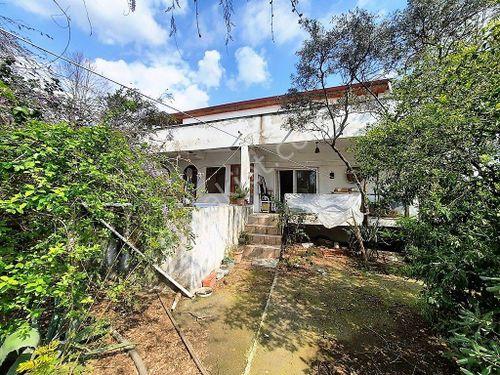 Köyceğiz Toparlarda 1532 m2 arsada 2 katlı ev ve köy evi satılık