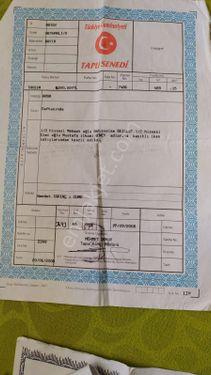 Reyhanlı da satılık 459metre parsel  fiyat  düştü