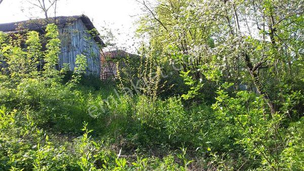 Sakarya kaynarca gölcede köy içinde 191 m2 müstakil tapulu bahçe