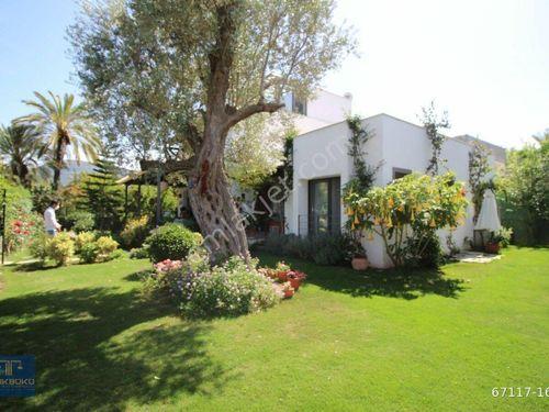 Türkbükü emlak tan gölköy,de denize 300 mt kiralık bahçeli villa
