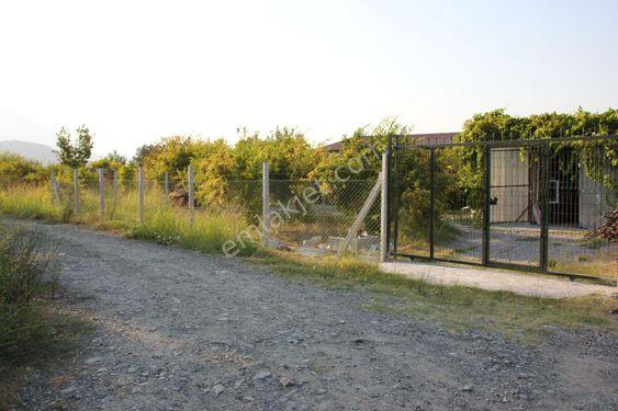 Sahibinden  Dalyan, Okçular'da 1764 m2 Nar bahçesi ve 3+1 kiracılı ev