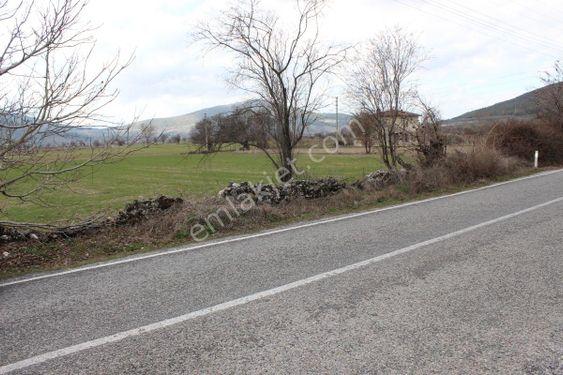 Muğla Yeşilyurt'ta Asfalt Yola Sıfır 1500m2 Arazi