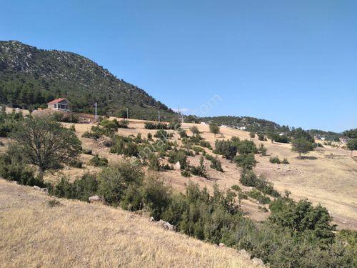 Bayatbademleri'nde Satılık 600m2 İmarlı Villa Arsası