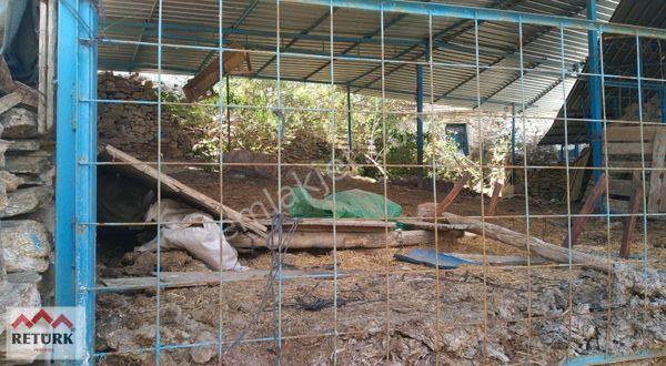 Geniş Bahçeli Köy evi