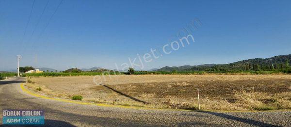 Muğla Ortaca Yeşilyurt mh 15000 m2 satılık arazi