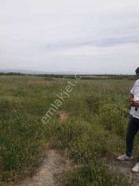 Meşe Emlaktan Yeşilyurt Merkez mevkisinde satılık dönüm Çiftlik