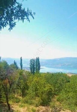 Sahibinden  Ermenek'te Baraj Manzaralı Doğa İçinde Satılık Bahçe