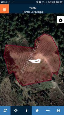 Manisa turgutlu BOZKIR köyü üçpınar deresi satılık arazi kirazlı