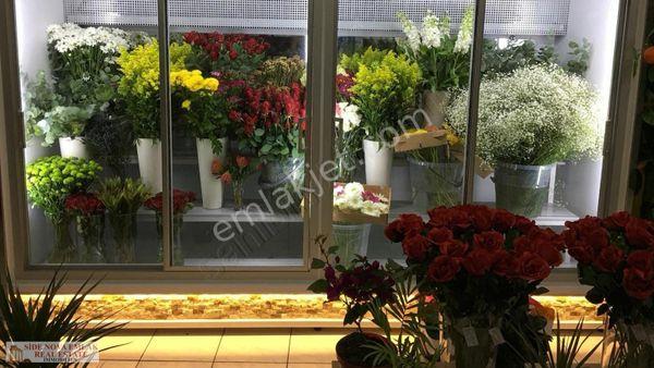 Manavgat merkezde devren satılık çiçekci