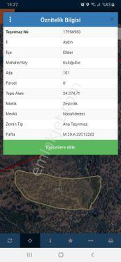 Aydın Efeler'de 24.374 m² Zeytinlik