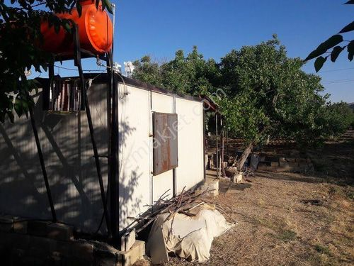Şehitkamil BATTAL Köyünde Yollu Konteynir Elektrik Su Cevizlik