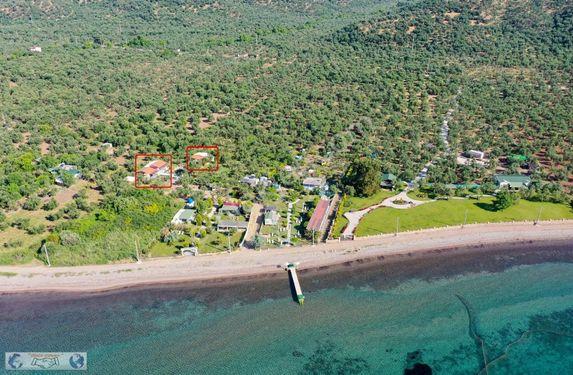 Asos Yolunda Denize Sıfır Kiralık Müstakil Evler