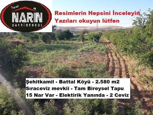 Şehitkamil BATTAL Köyünde Ceviz Nar Meyve Bahçesi Yol Elektirik