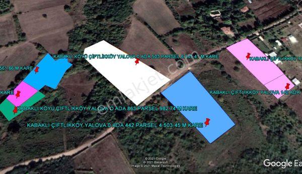 YALOVA KABAKLI DA MUHTEŞEM MANZARALI 6.545 M KARE TARLA