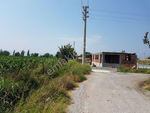 Muğla Ortaca Okçular da satılık müstakil 15000 m2 verimli arazi