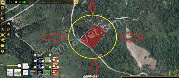 Kocaeli Gölcük Ulaşlı YavuzSultanSelim'de Satılık 4370 M2 Tarla