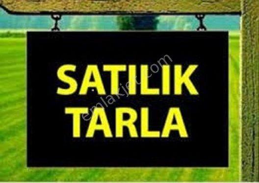 SATILIK TARLA MEVCUTTUR!!