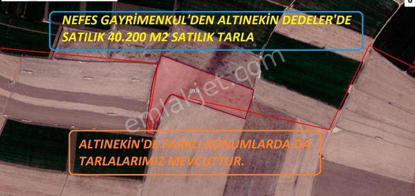 NEFES'DEN ALTINEKİN DEDELER'DE SATILIK 40.200 M2 TARLA