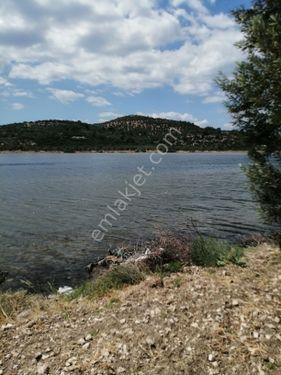 Bademlide Denize Sıfır Anayola Cepheli Zeytinlik