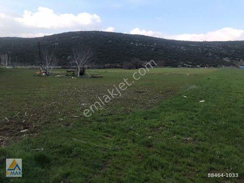 YERKESİK YAYLASINDA KADASTRAL YOLU OLAN %5 İMARLI 3500 m2 TARLA